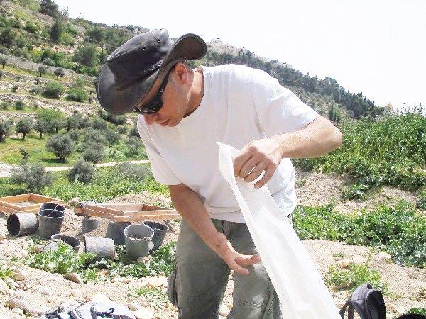 חתנים רבים מעדיפים לקחת אפר דווקא מעפר הר הבית. צחי דבירה צילום: פרויקט סינון העפר מהר הבית